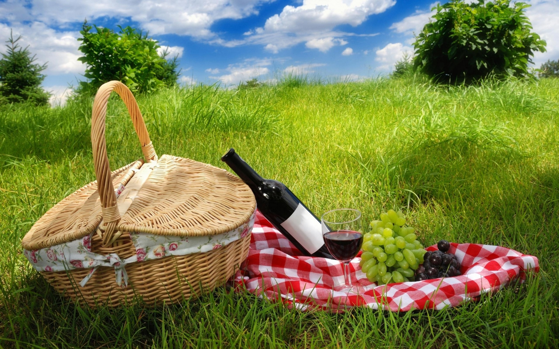 6 Benefits Direct You Feel After Picnic Living